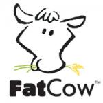 استضافة fatcow وخصم اكثر من 60% ودومين مجانا